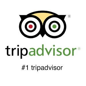 TripAdvisor Logo #1 b&b in Monmouth